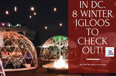 Dine Out In DC-8 Winter Igloos To Check Out!